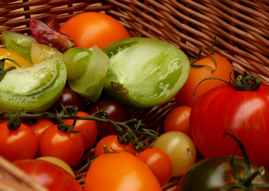 Abergavenny Food Festival Tomatoes